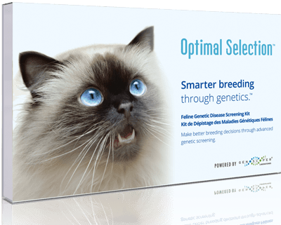 Top 5 DNA Tests for Cats (2020 review) 3
