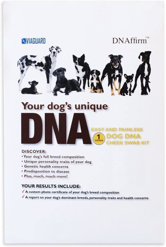 Picture of dog DNA test