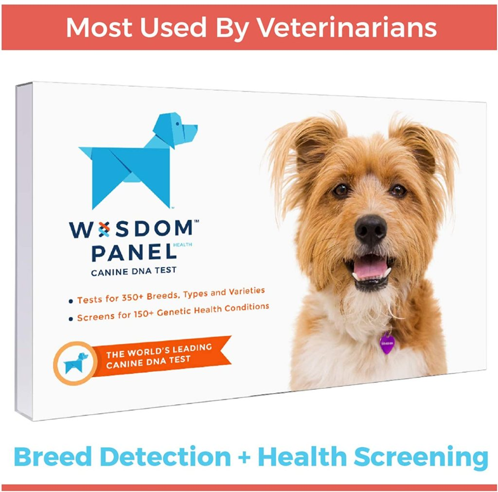 Top 5 DNA Tests for Dogs 5