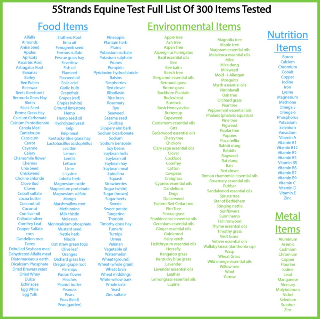 5Strands Horse Intolerance Test Review 8